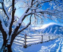 snow-wallpaper